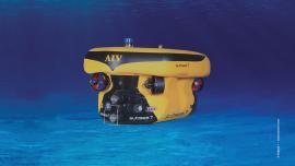 Autonomous inspection vehicle (AIV)