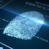 Fingerprint biometrics increase security