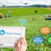 IoT for streamlining farming