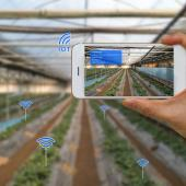 Smart farming and IoT